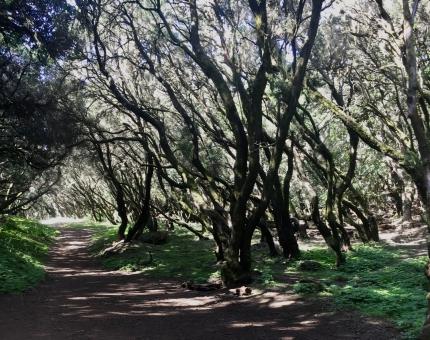 Wanderung auf dem GR132