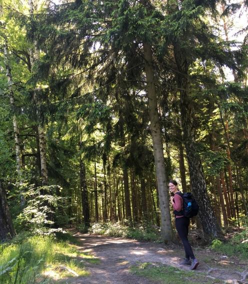 Wandern auf dem Malerweg